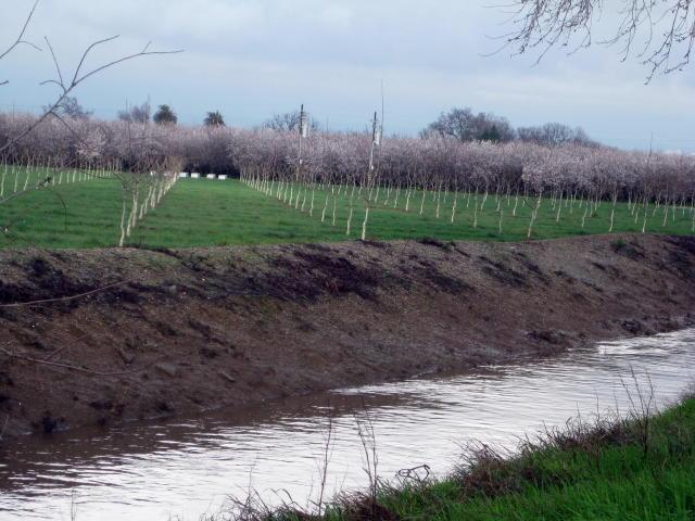 February2010f